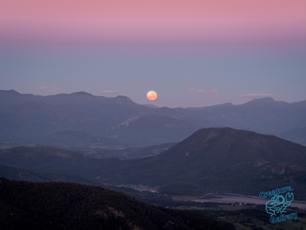 Moonset over the Scenic Rim, Queensland