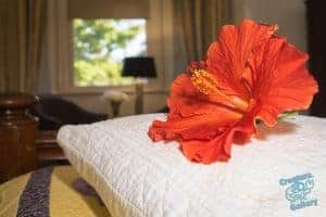 Real estate photo - Flower on bed